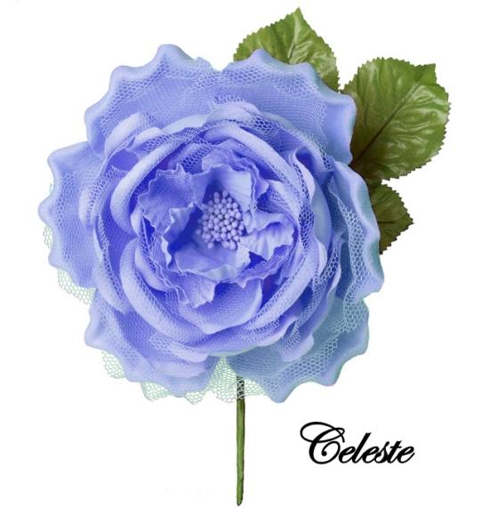 CELESTE (1)
